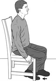Sitting Knee Flexion