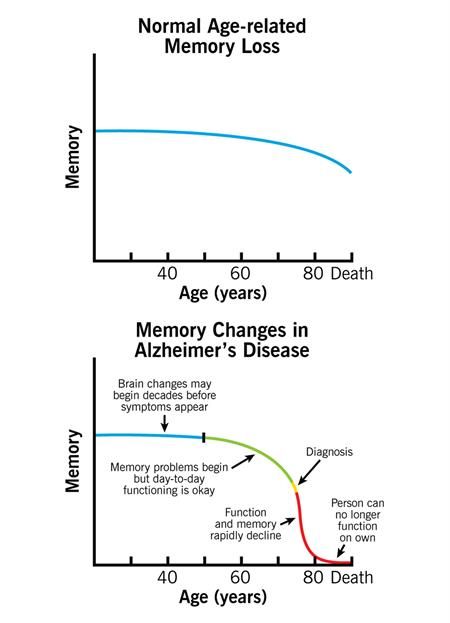 Normal age-related memory changes vs memory changes in Alzheimer's disease
